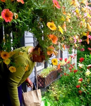 Hobart Flower Breena